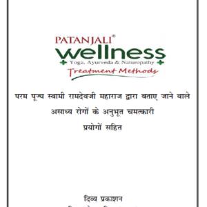 Patanjali Wellness Yog Ayurved Naturopathy Treatment Methods Book Next